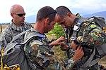 U.S. Airmen jump with Bulgarians during two-week flying training (9400063059).jpg
