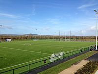 Large, synthetic-grass playing fields