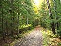 UMaine Trail 2.JPG
