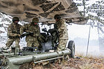 US, UK artillerymen participate in Operation Pegasus Cypher 150113-A-DP764-014.jpg