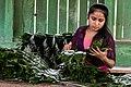 USAID Measuring Impact Conservation Enterprise Retrospective (Guatemala; Rainforest Alliance) (25433640187).jpg