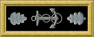 Selim E. Woodworth - Image: USN com rank insignia