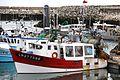 Un chalutier de pêche côtière (70).JPG