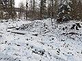 Untere Heidenburg Burgstall Winter 2.jpg