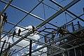 Vögel auf Ästen von unten Zoologischer Garten Hof 08062019.jpg