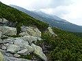 Velická dolina, Vysoké Tatry, 2012, 006.JPG
