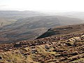 View from Pen-y-ghent summit - geograph.org.uk - 504954.jpg