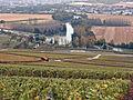 Vignes (vue sur la Marne depuis Hautvillers.51) Cl.J.Weber04 (23677661455).jpg