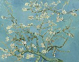 closeup view of blossoms on tree branches against pale blue sky
