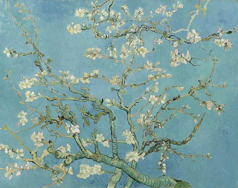 Amandiers en fleur de Van Gogh (1890).
