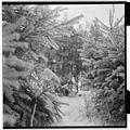 Vinterlandskap i Trysil - Fo30141603170050.jpg