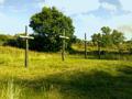 Vlakte van Waalsdorp (Waalsdorpervlakte) 2016-08-10 img. 218.png
