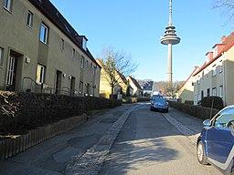 Vogelhain in Kiel
