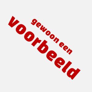 Voorbeeld nl.png