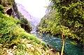 Vrbas river.jpg