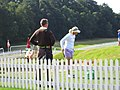 WBO2008 Minea Blomqvist and Timo Rauhala chipping green.jpg