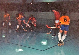Roller Hockey At The 1981 World Games Wikipedia