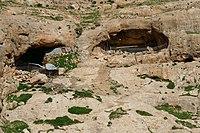Wadi-Makukh-543.jpg