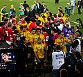 Wales vs Australia 2011 RWC (3).jpg