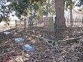 Ward Memorial Cemetery Lucy TN 013.jpg