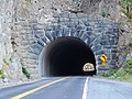 Washington State Route 123 tunnel north side.jpg
