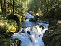 Waterfall at Opal Creek Wilderness in Oregon 1.jpg