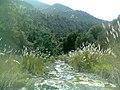Waziristan Png67899.jpg