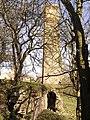 Webbs Heath Drift Mine. - panoramio (2).jpg