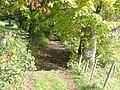 Weg zum Rottachberg - panoramio.jpg