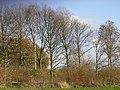Wilhelminapark - Rijswijk - 2009 - panoramio (5).jpg