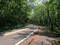 Yamanashi-Prefectural road route №119.JPG