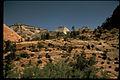 Zion National Park ZION2437.jpg