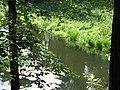 (PL) Polska - Warmia - Las Miejski w Olsztynie - The City Forest in Olsztyn - zakole rzeki Łyna - Lyna river bend (28.VIII.2012) - panoramio.jpg