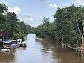 Área de Proteção Ambiental da Ilha do Combu Johanan Toledo (01).jpg