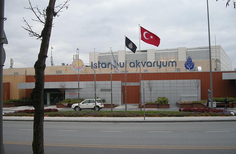 イスタンブール水族館