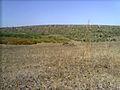 Балка Північна Червона 02.jpg