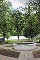 Біогрупа хвойних дерев 02.jpg