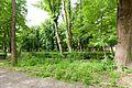 Виноградів Парк 4650.jpg