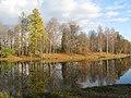 Гатчинский парк. Белое озеро осенью 04.jpg