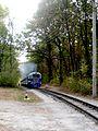 Детская железная дорога.JPG