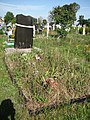Загальний вигляд братської могили воїнів УПА у с. Дядьковичі.jpg