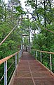 Металевий пішоходний міст через річку Тетерів в селищі Пісківка.jpg