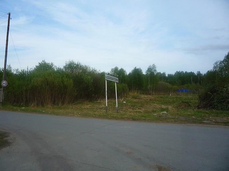 File:Начало перемен в обществе 2010 год - panoramio.jpg