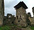 Невицький замок, біля села Кам'яниця Ужгородського району Закарпатської області-4.jpg