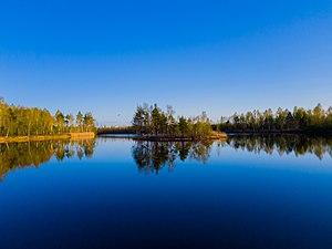Озеро Новое, село Демидово, Ивановская область.jpg