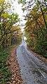 Пат кон селото Малкоец.jpg