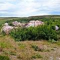 Район хребета Наун-пэ, Ямал - panoramio (2).jpg