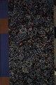 Руска історична біблїотека. Том XVII. Історичні моноґрафії Миколи Костомарова. Том X. Мазепа. Часть I.pdf
