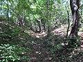 Рів і два вала оборонної споруди північній частині поселення «Куколівське».jpg