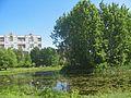 Сад Бенуа, пруд с островом04.jpg